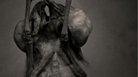 Leprous presentan «The Price», primer tema de su nuevo disco