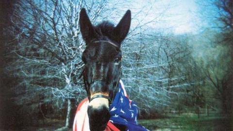 Impactante y poderoso, así fue el primer disco de Gov´t Mule