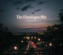 The Flamingos Bite presenta videoclip de su single «Roads»