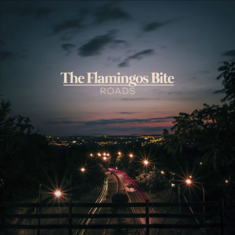 The Flamingos Bite presenta videoclip de su single «Roads»